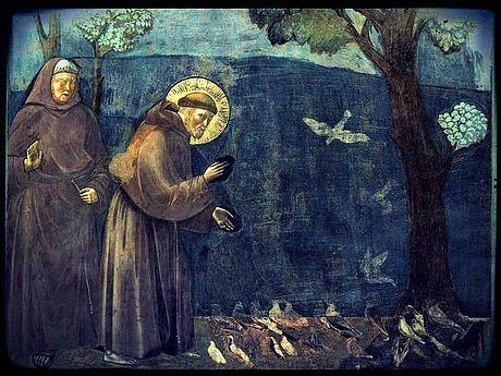 Franz von Assisi und der Hamster amBaikalsee